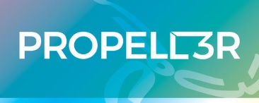 Propell3r Consulting